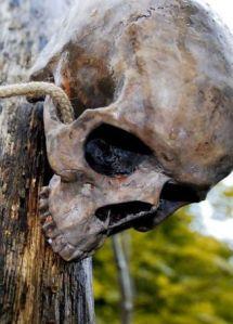 skull-veneration